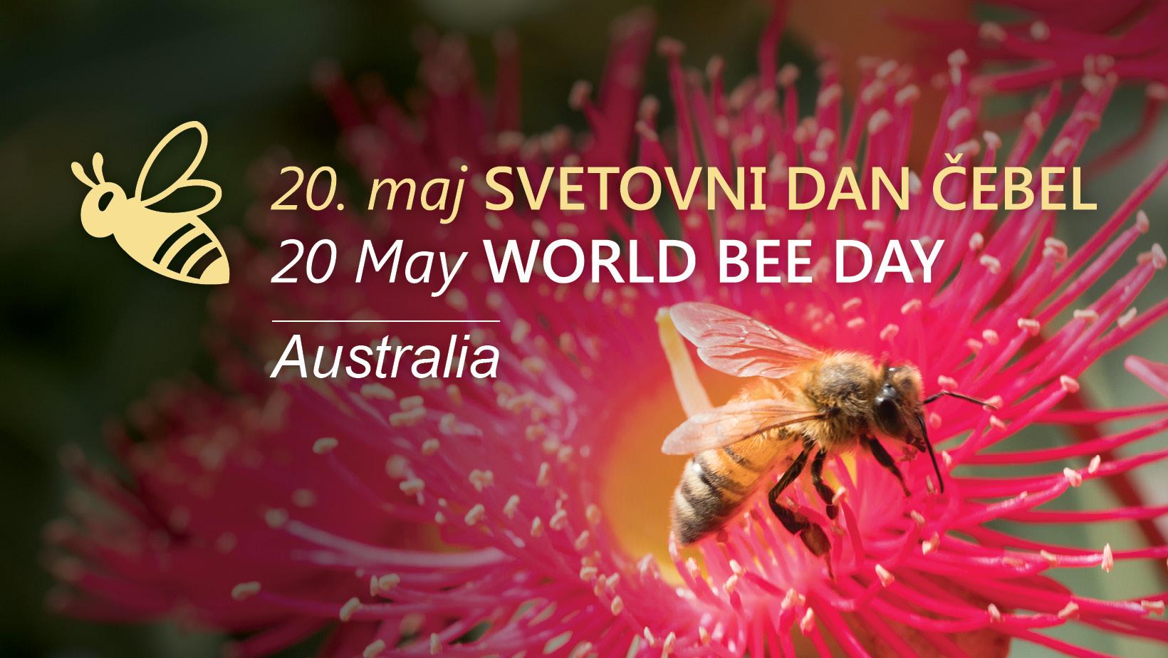 World Bee Day – Australia – 20th May
